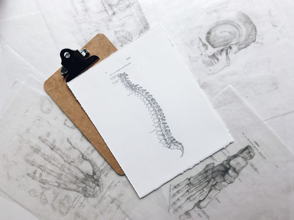 Medical Marijuana and Spinal Cord Injury
